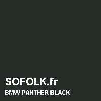 Leather seat color BMW