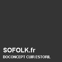 BOCONCEPT: leather sofa colour