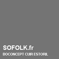 Teinte canapé cuir BOCONCEPT