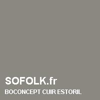 BOCONCEPT: color del cuero