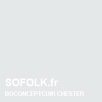 BOCONCEPT: leather sofa colour