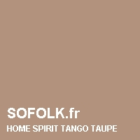 HOME SPIRIT: leather sofa colour