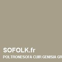 POLTRONESOFA: color del cuero