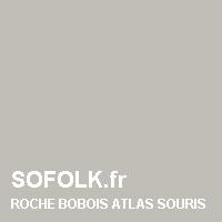 Teinte canapé cuir ROCHE BOBOIS